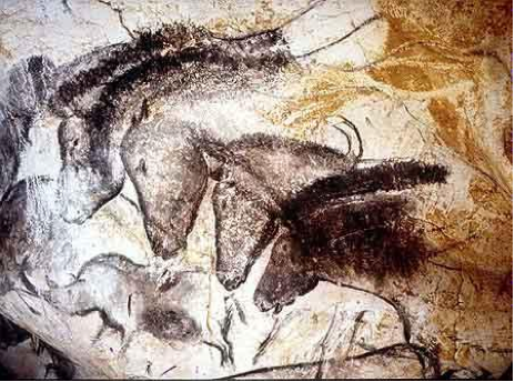 cavalos de chauvet